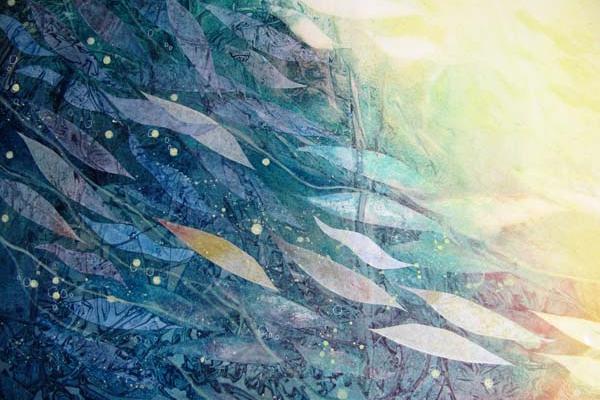 Shoal Slider image by Take 13 artist Lynne Sawyer