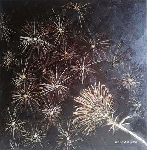 Thistle seed by Helen Owen